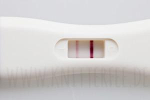 feststellen schwangerschaft frühtest